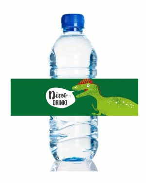 Printable Dinosaur Party Drinks Label Editable Collette and Co 4