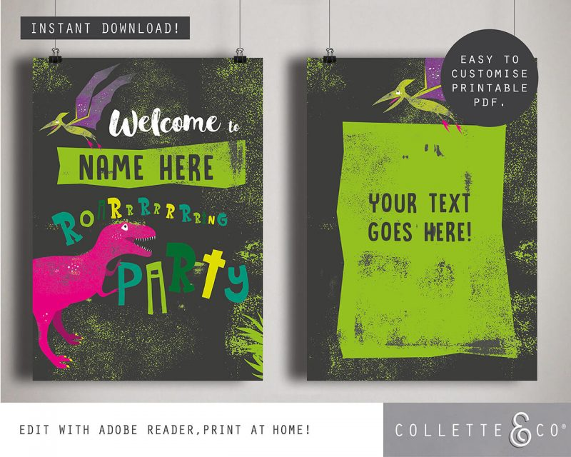 Printable Girl Dinosaur Pink Party Poster Pack x4 Editable Collette and Co 7
