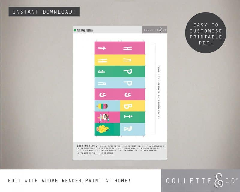 Printable Ice Cream Party Food Flags Straw Flags Editable Collette and Co 2