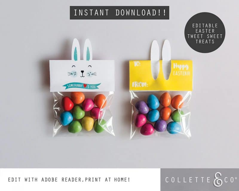 1. EASTER somebunny loves you PV 1 cover page Easter Printables Bundle Collette and Co