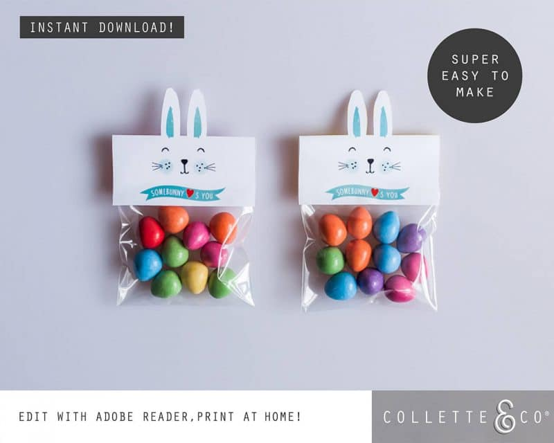 1. EASTER somebunny loves you PV 2 visual Easter Printables Bundle Collette and Co