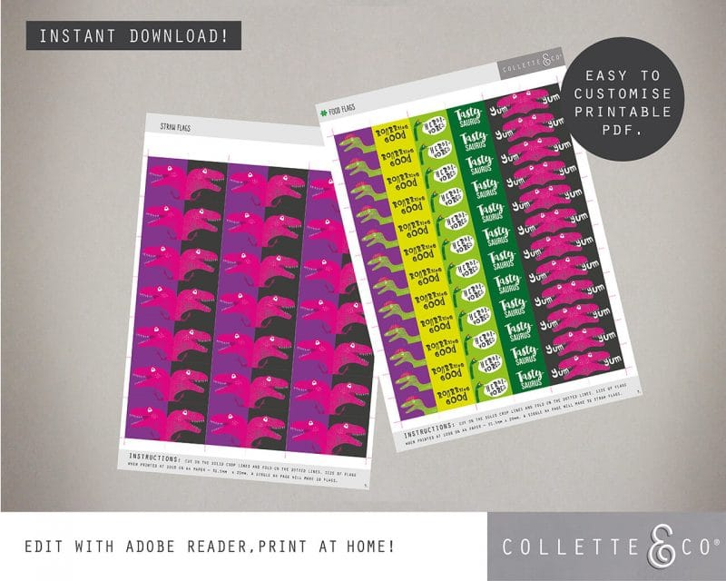 Girl dinosaur party decorations printable Collette and Co 21