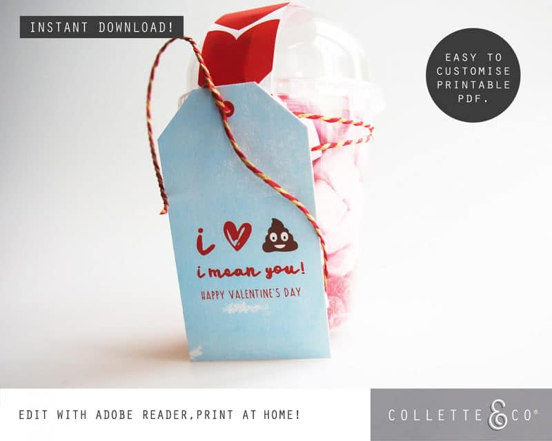 Valentines Day Bundle Editable Printable Collette and Co 20
