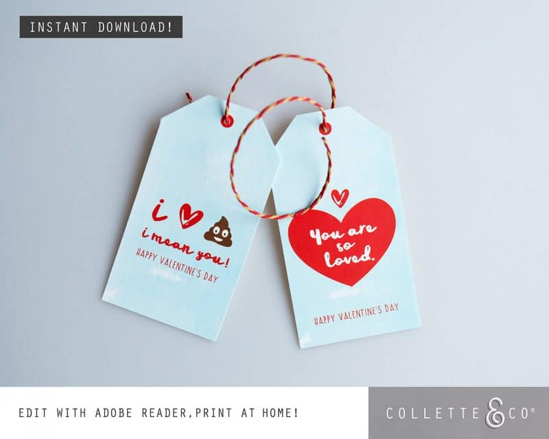 Valentines Day Bundle Editable Printable Collette and Co 23