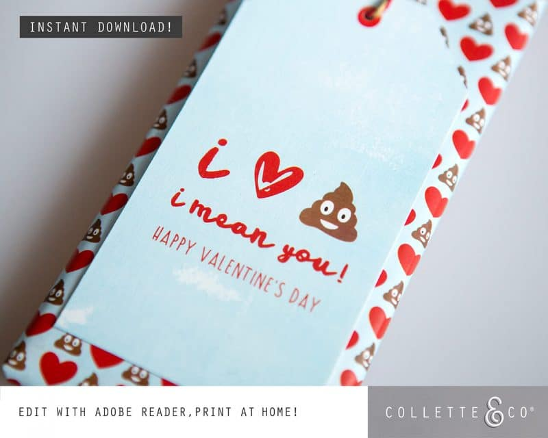 Valentines Day Bundle Editable Printable Collette and Co 26