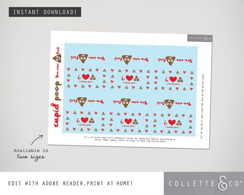 Valentines Day Bundle Editable Printable Collette and Co 8