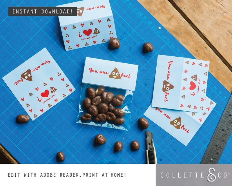 Valentines Day Bundle Editable Printable Collette and Co 9
